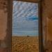 Desert framed by pusspup