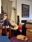 15th Nov 2015 - Sleeping amongst the clutter