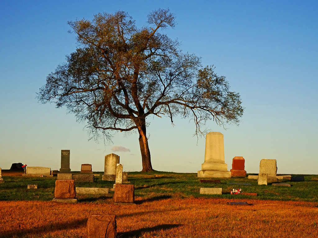 Cemetery Sunrise by jae_at_wits_end