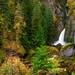 Wahclella Falls Mystic