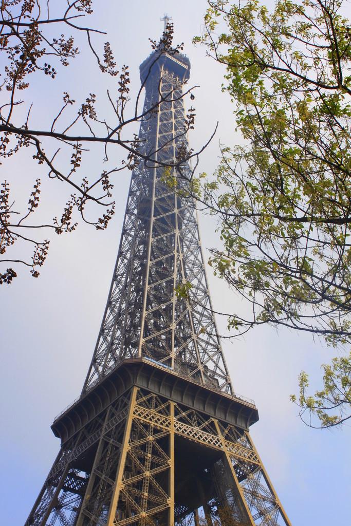Eiffel tower by moya