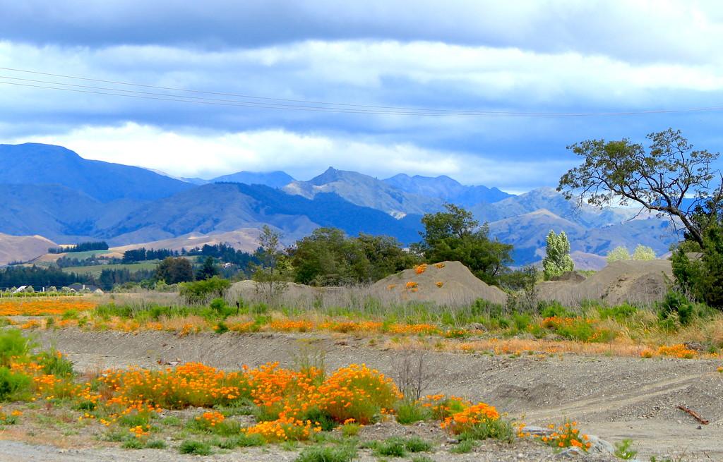 Mountain view by kiwinanna