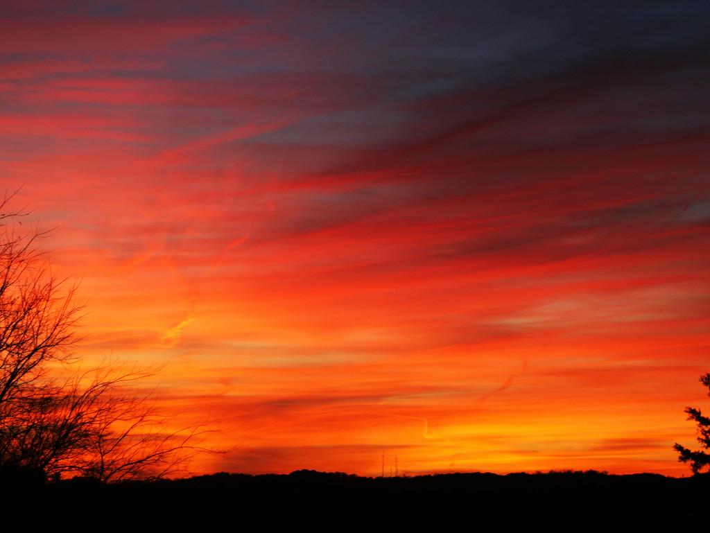 Friday, November 20, 2015 by ryanjasonphotography