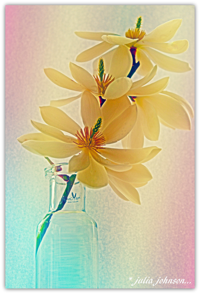 The Fairy Machaela_2nd edit.. by julzmaioro