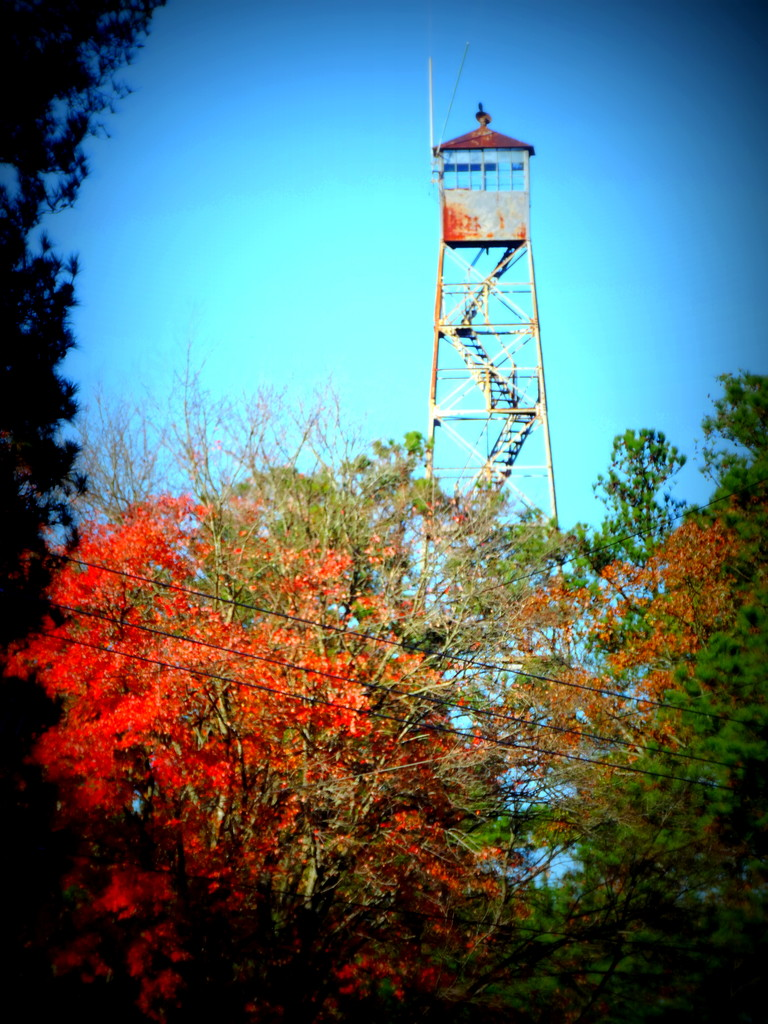 Fire Tower in the Fall by homeschoolmom