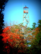 20th Nov 2015 - Fire Tower in the Fall