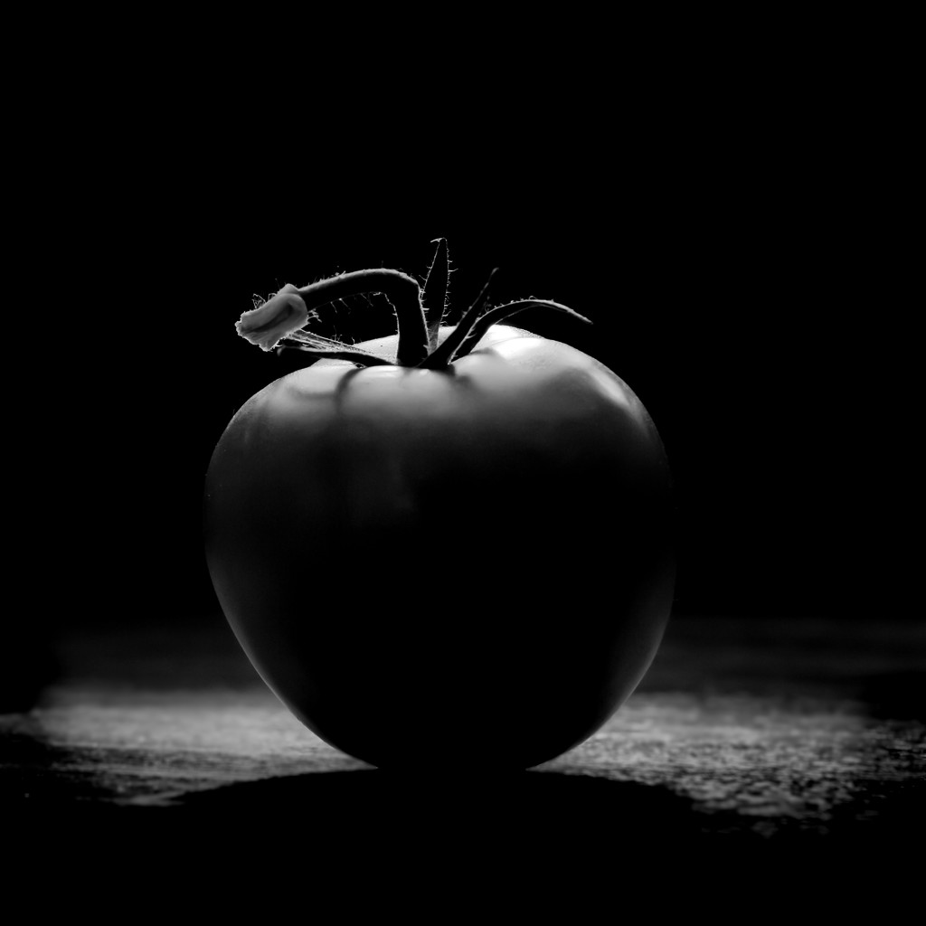 T is for Tomato by northy