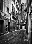 25th Nov 2015 - Back alley