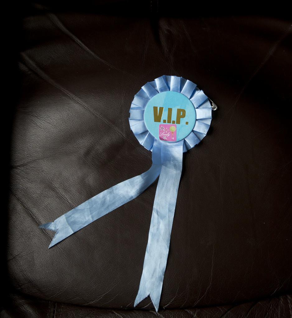Maddi's VIP Award.... by brickmaker