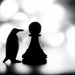 Louie, I think this is the beginning of a beautiful friendship
