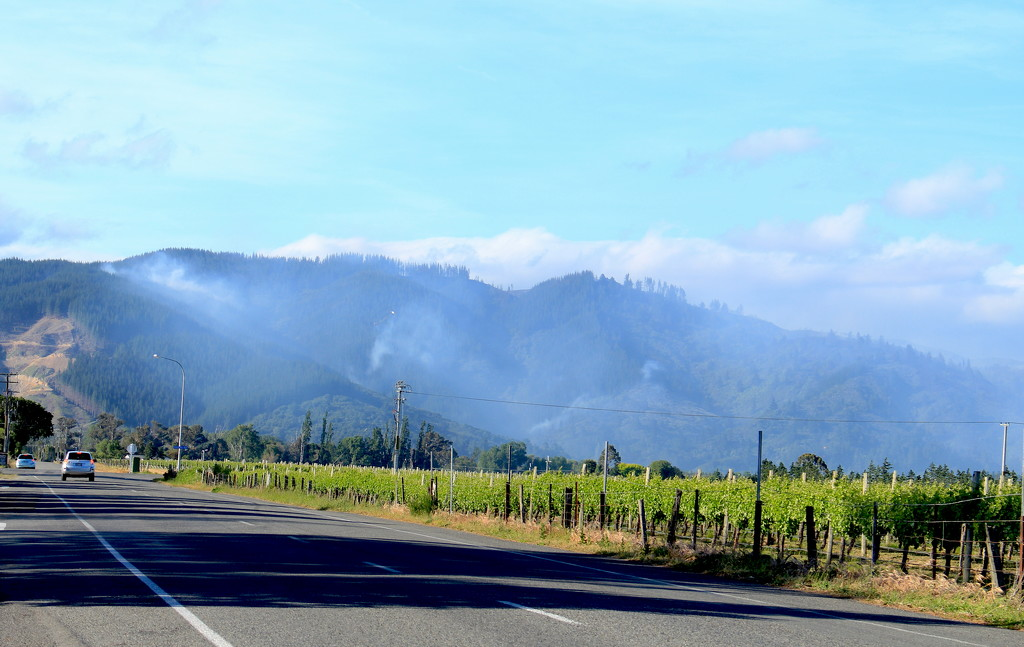 The hills are still on fire by kiwinanna