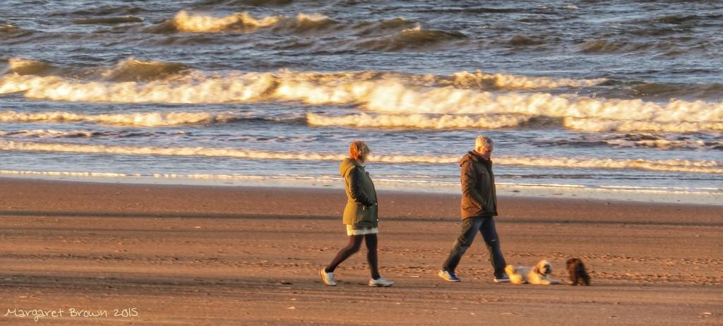Seashore stroll by craftymeg