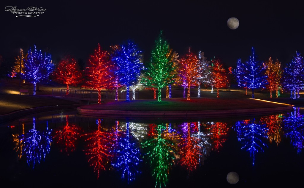 Vitruvian Park by lynne5477