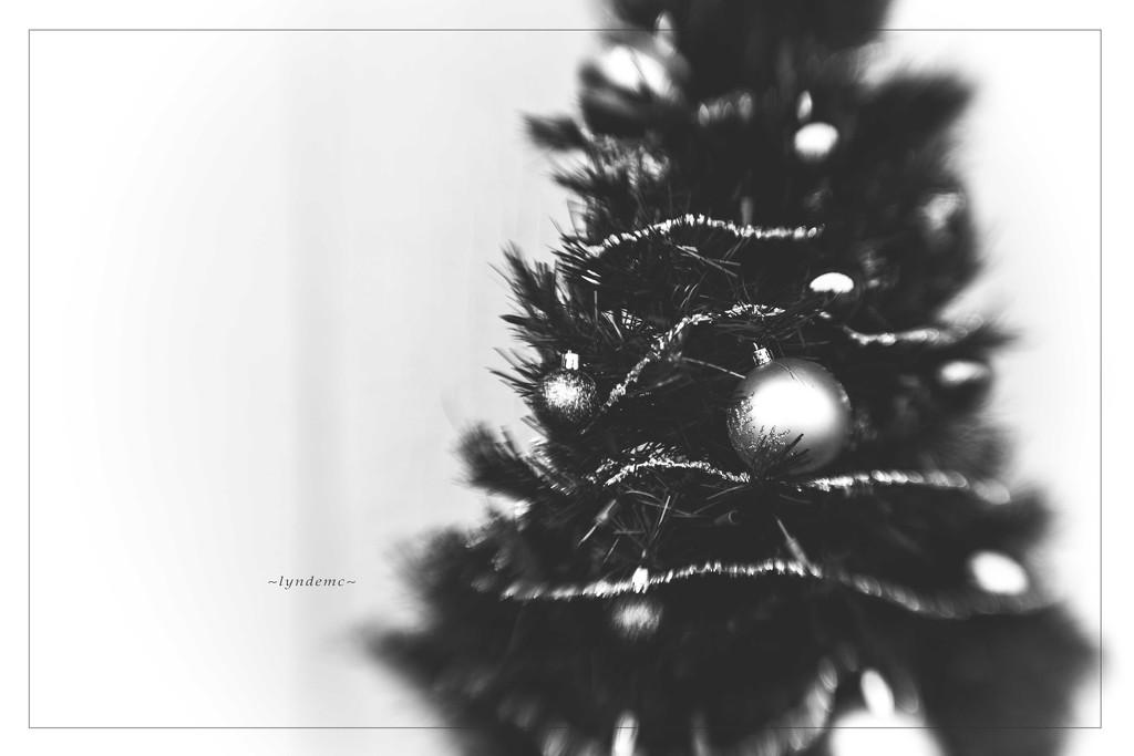 Tree by lyndemc