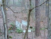 4th Dec 2015 - Just a random bridge in the woods