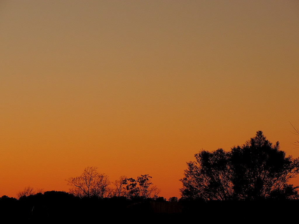 Minimal  Sunset by homeschoolmom