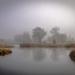 Foggy Morning by rosiekerr