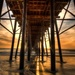Under the Oceanside Pier by taffy