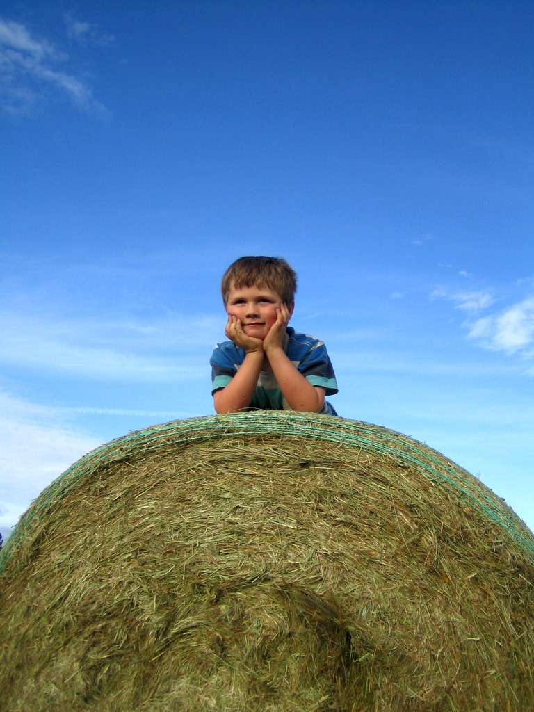 BalED by wenbow