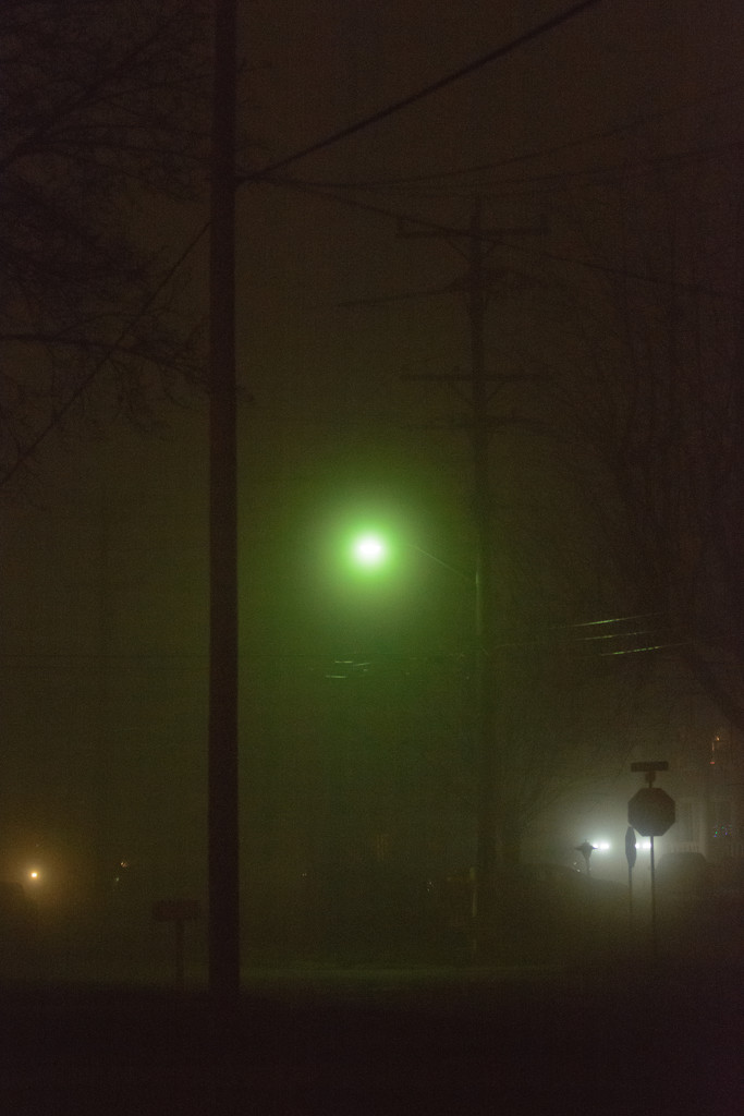street lights and fog by jackies365