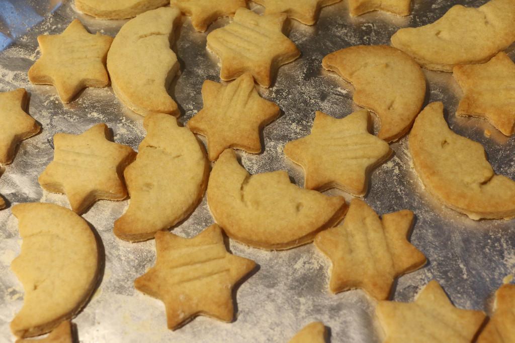 Cookies by ingrid01
