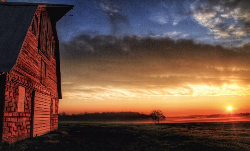 Morning Warmth by sbolden