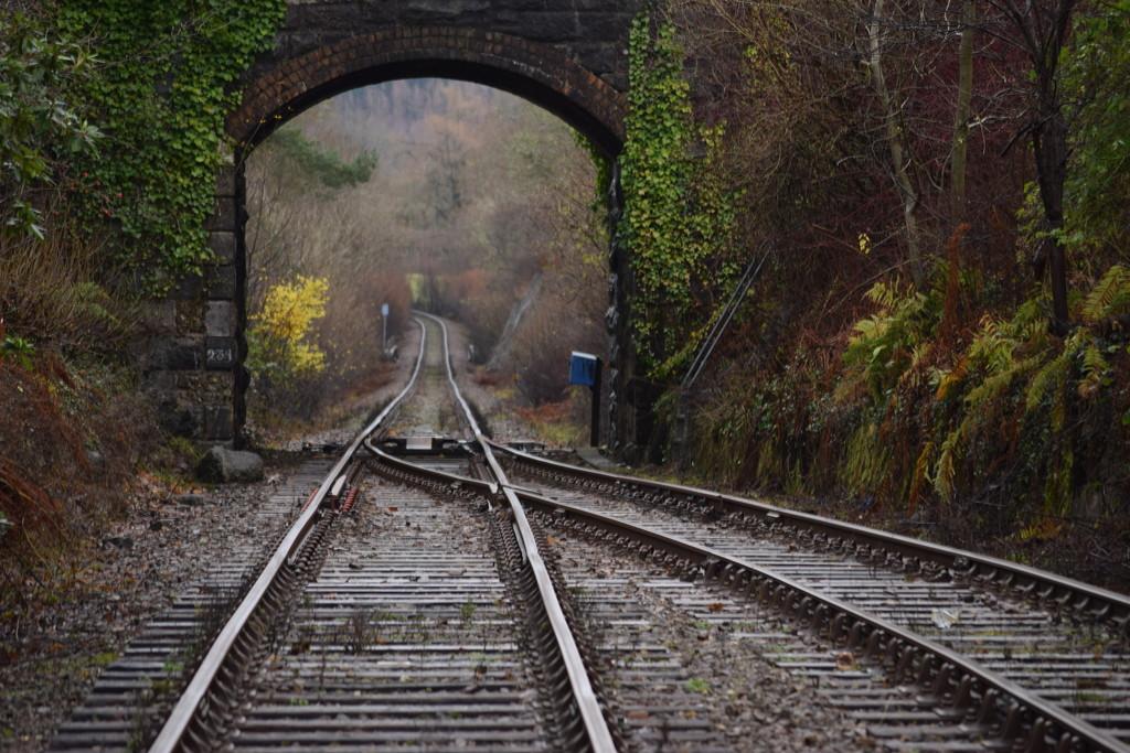 under the bridge by christophercox
