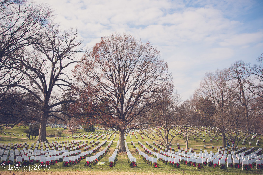 A Day To Remember And Honor Our Fallen Heroes by lesip