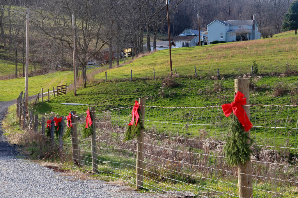 Christmas in the country by mittens