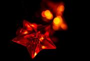 14th Dec 2015 - Star Light Star Bright