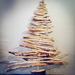 Christmas Tree by gailmmeek