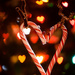 Candy cane love by novab