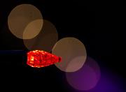 15th Dec 2015 - Little Red Christmas Light