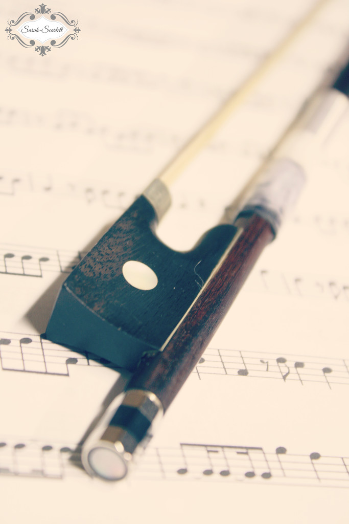 Violin Bow by sarahlh