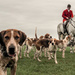 Hounds and huntsman by barrowlane