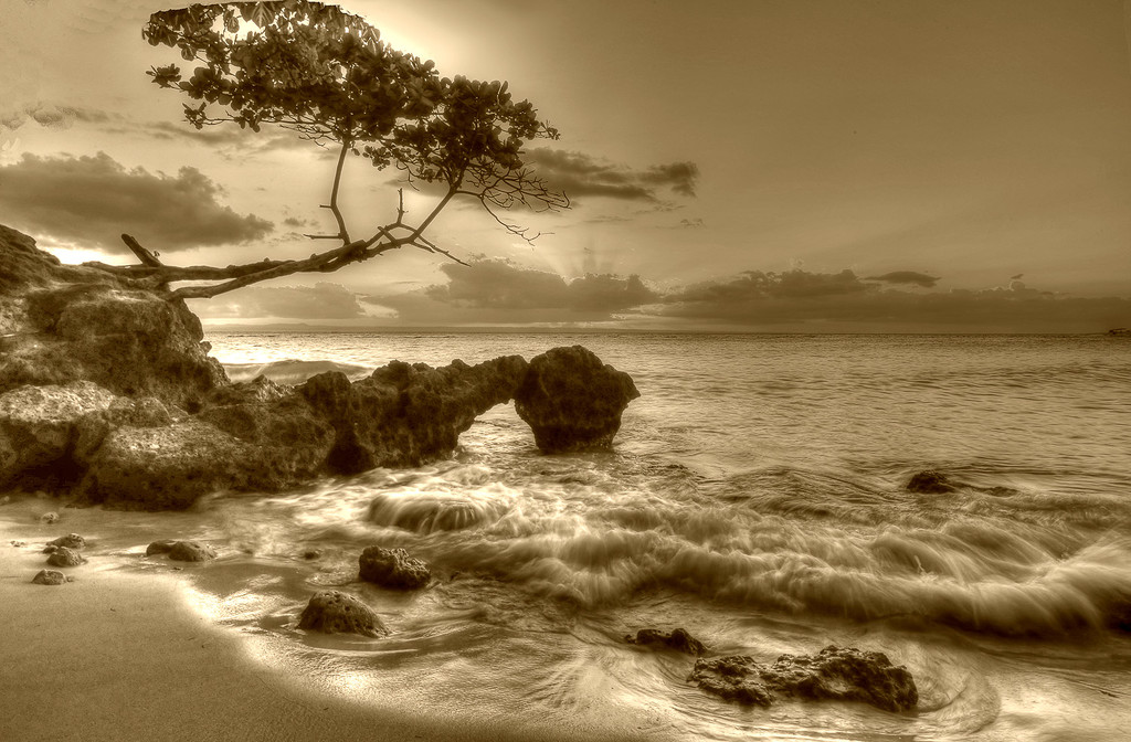 Jurassic Shoreline by pdulis