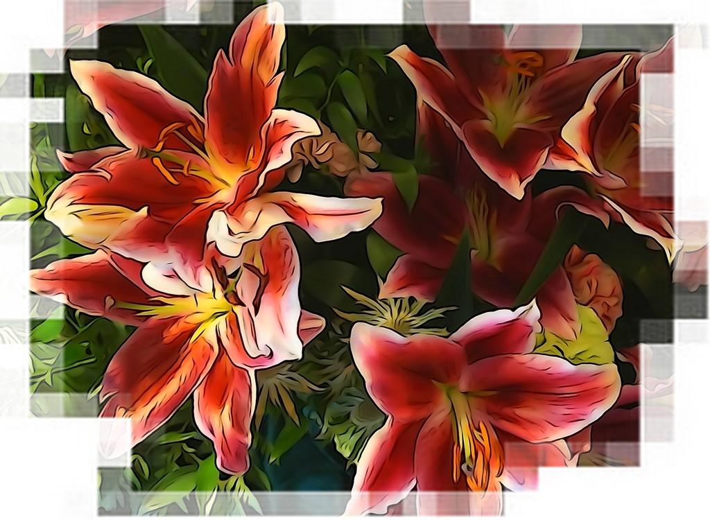 Christmas lillies by quietpurplehaze