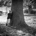 Boy & Tree by newbank