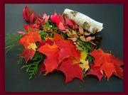 25th Nov 2010 - THANKSGIVING
