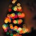 Christmas Tree by loweygrace
