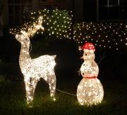 16th Dec 2015 - Christmas lights