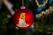 25th Dec 2015 - Christmas Tree Ornaments