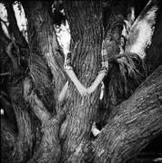 26th Dec 2015 - Tree hugger