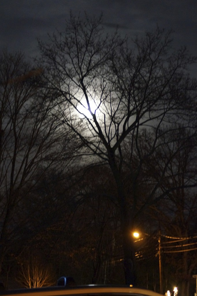 Christmas Eve Full Cold Moon by meotzi