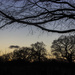 Clear evening by shepherdman