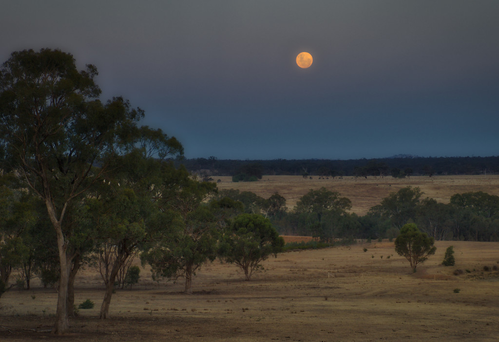 Moonrise over Mt Camel by golftragic