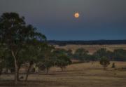 28th Dec 2015 - Moonrise over Mt Camel