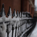 Snow on Fence by bill_fe