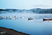 30th Dec 2015 - Fog on Svorksjøen