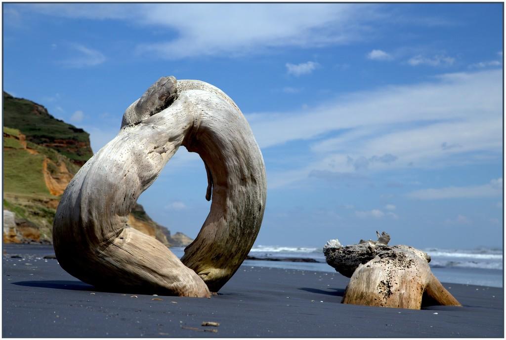 Beach sculpture by dide